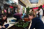 Školáci soutěží o nejhezčí květinový ostrůvek.