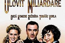 Horní část plakátu k českému filmu Ulovit miliardáře.