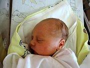 Tereza Horynová se poprvé podívala na maminku Martinu a tatínka Víta 2. prosince 2015. Její poporodní míry byly 50 centimetrů a 3100 gramů. Dětským světem ji v Libenicích provede tříletý bráška Vašík.