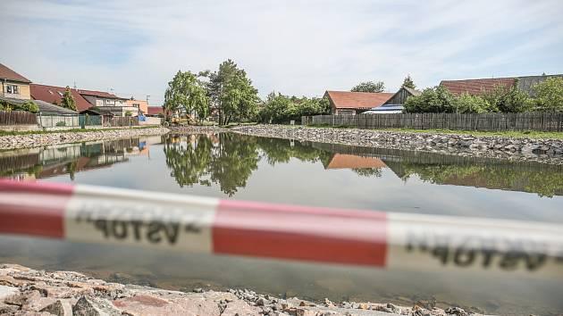 Revitalizace rybníku Haltýř v Sendražicích.