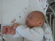 Vanessa Puchrová se poprvé rozhlédla  7. srpna 2017 s váhou 3600 gramů a výškou 50 centimetrů. Společně s rodiči Danielou a Petrem a devatenácti měsíčním bráškou Matyášem bude žít v Milovicích.
