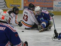 Z utkání České ligy sledge hokeje Draci Kolín - Sparta Praha (3:2 po samostatných nájezdech).