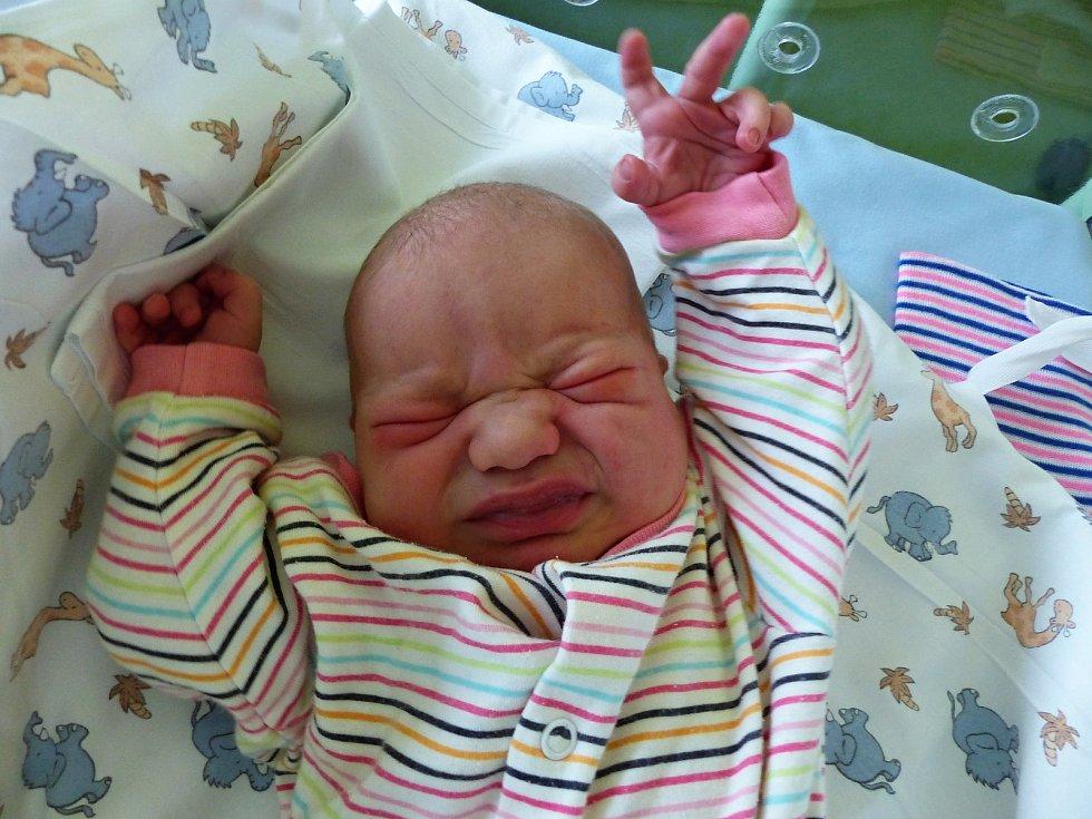 Sofie Bílková se narodila 2.12.2018, vážila 3910 g a měřila 51 cm. V Ondřejově ji přivítá bráška Sebastian (2) a rodiče Pavlína a Marcel.
