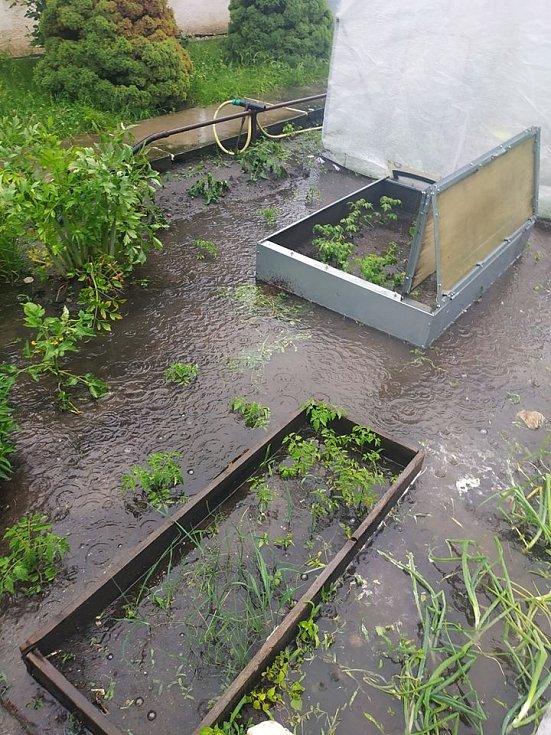 Zatopená zahrada v Sendražicích 14. června 2020.