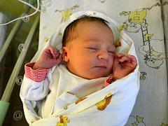 Nikola Navrátilová se poprvé podívala na maminku Hanu a tatínka Josefa 8. září 2015. Po narození se chlubila výškou 50 centimetrů a váhou 3350 gramů. Dětským světem ji v Uhlířských Janovicích provede čtyřletý bráška Ondra.