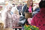 Velikonoční řemeslný trh na Karlově náměstí v Kolíně