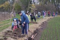 Obec Lošany se připojila ke spolupráci na projektu Podlipansko sází stromy, který připravila MAS Podlipansko.