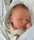 Dominik Kolouch se prvně podíval na maminku Šárku a tatínka Petra 31. října 2016. Po narození se pyšnil výškou 51 centimetr a 3620 gramů. Spolu srodiči a dvouletým bratříčkem Davídkem bude vyrůstat vUhlířských Janovicích.