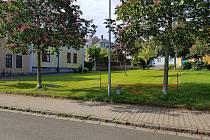 Testovací plocha na Kollárově náměstí v Kolíně obsahuje tři různě vysoké pásy trávy.