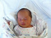 An Nhien Ninh se narodila 3.12.2018 s mírami 2900 g a 49 cm. V Třemošnicic ji přivítá bráška Ngoc Anh (12) a rodiče Huong Giang a Van Ly.