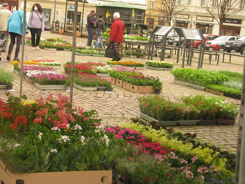 Trh na Karlově náměstí v Kolíně.