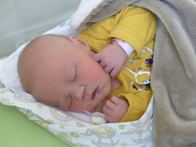 Ester Vojnová se narodila 1. října 2021 v kolínské porodnici,  vážila 3750 g a měřila 51 cm. V Kutné Hoře ji přivítali sourozenci  Barča  (14), Simča (8), Vincent (12), Frída  (9) a rodiče Lucie a Jakub.