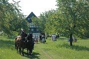 Oblíbeným zákoutím filmařů je také polohrázděný dům z Jílového s nádhernou loukou a kvetoucím třešněmi v okolí. Když přibudou ještě kupky voňavého sena a bzukot včel, je idyla poklidu českého venkova naprosto dokonalá.