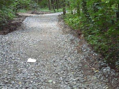 """Kamení velké jako dlažební kostky nyní """"zdobí"""" podle sportujících Kolíňáků jediný pořádný kopec na běhání v Borkách u takzvaného Klepeťáku. Snímky jsou z úterý 31.7. v poledne."""