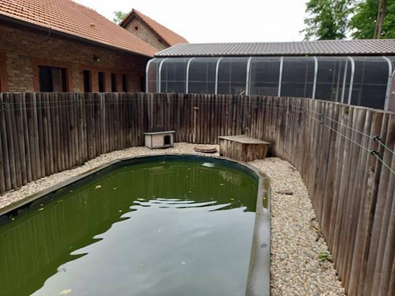 V Záchranné stanicí pro handicapované živočichy Huslík v Poděbradech.