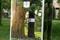 Chytrá veřejná toaleta. Ilustrační foto..