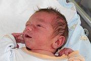David Zradička je prvorozeným synem Lucie a Jakuba z Úval. Narodil se 12. července 2017 s váhou 3456 gramů a 52 centimetrů.