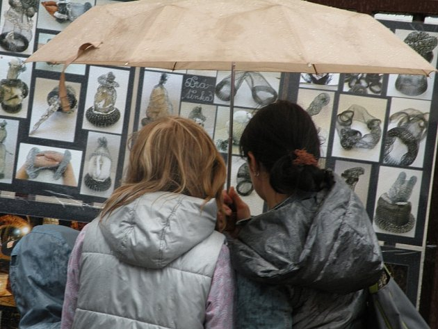 Výstava na plotě v Českém Brodě