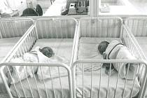 Novorozenci v kolínské porodnici na snímku z roku 1995.