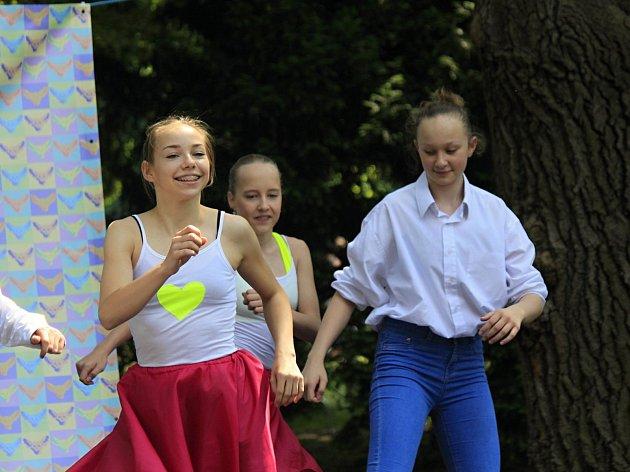 Vsobotu se u pivovarského rybníka v Českém Brodě konal festival neziskových organizací.