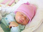 DOMINIKA HORÁKOVÁ se narodila rodičům Martině Žďárské a Pavlu Horákovi 31. ledna v 19.10 hodin. Vážila 3600 g a měřila 49 cm. Rodina bydlí v Lánově.