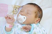 Pětiletý Honzík se dočkal sestřičky. Anna Němcová poprvé zakřičela 21. září 2012, po porodu měřila 53 centimetry a vážila 3830 gramů. Maminka Lucie a tatínek Radek děti vychovávají v Ovčárech.