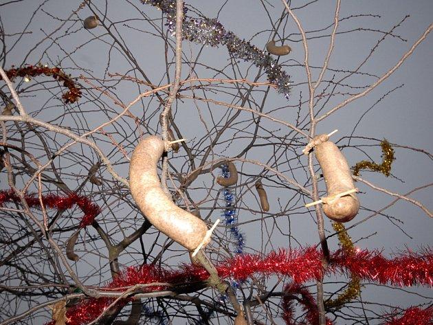 Z neobvyklé akce v Bečvárech, kde na stromě visely jitrnice.