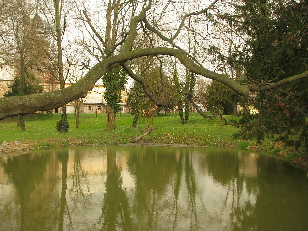 Park u zámku v Červených Pečkách