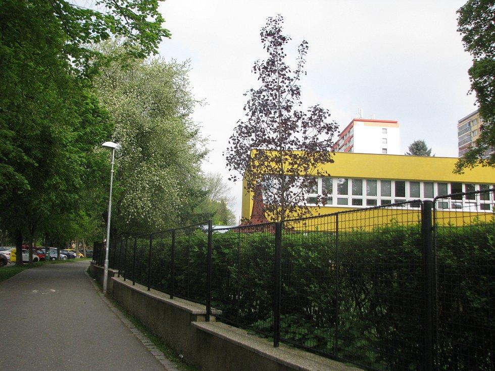 Jaro na sídlišti v Kolíně.