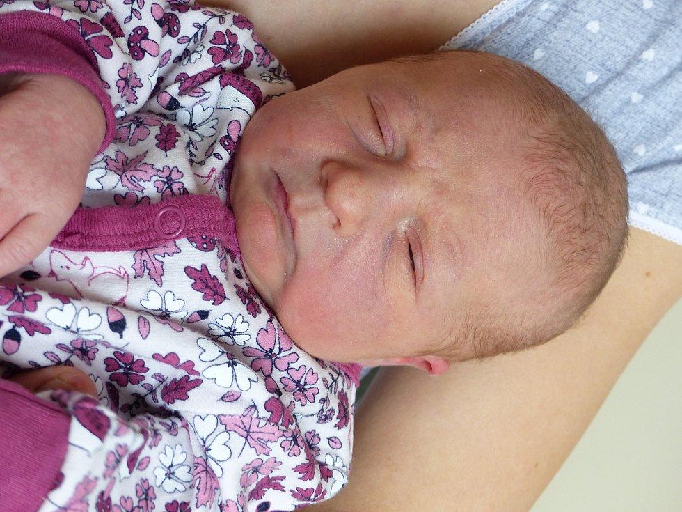 Emílie Hrbková se narodila 29. listopadu 2020 v kolínské porodnici, vážila 3395 g a měřila 49 cm. Do Křesetic odjela s maminkou Martinou a tatínkem Petrem.