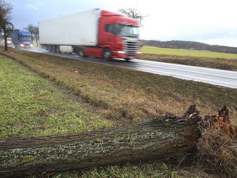 Polámané stromy u Uhlířských Janovic.