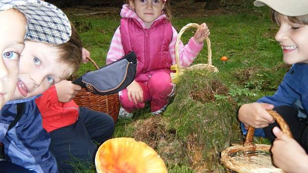 Děti vyrazily na houby do lesa.