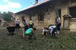 Účastníci Summer Workcampu uklízeli kostel sv. Havla a hřbitov ve Štolmíři.