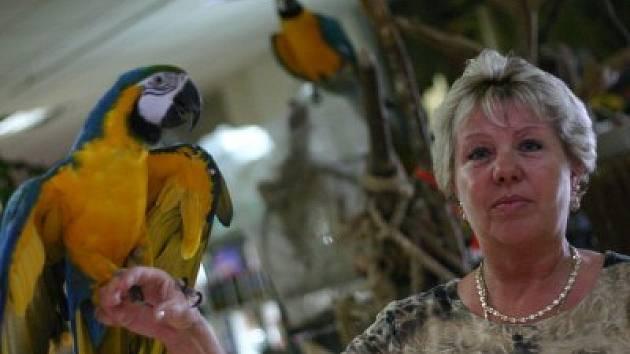 Helena Kalendová (53 let) si díky své celoživotní lásce ke zvířátkům otevřela zoomarket a i přesto, že začátky byly velmi těžké, dokázala se prosadit. Podniká sedm let. Její motto: V dnešní době je společnost necharakterní. Je založená pouze na penězích.