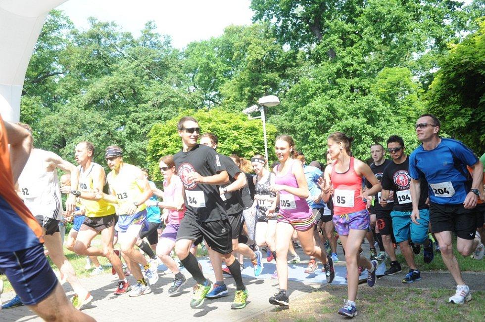 Mezinárodní festival běhu 2015.