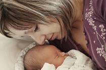 Terezie Nováková přišla na svět 3. března 2012, a to s váhou 3130 gramů a výškou 49 centimetrů. Rodiče Hana a Radek budou dceru vychovávat v Kolíně.