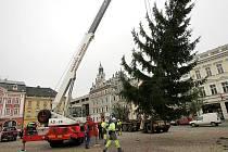 Nebude to dlouho trvat a na Karlově náměstí se objeví vánoční strom stejně krásný, jako byl vloni