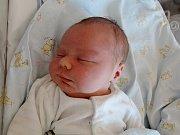 David Baláž se poprvé rozkřičel 8. května 2017. Vážil 4500 gramů a měřil 54 centimetrů. Doma v Jestřabí Lhotě se na něj těšil čtyřletý bratříček Románek, tatínek Roman a maminka Ivona.