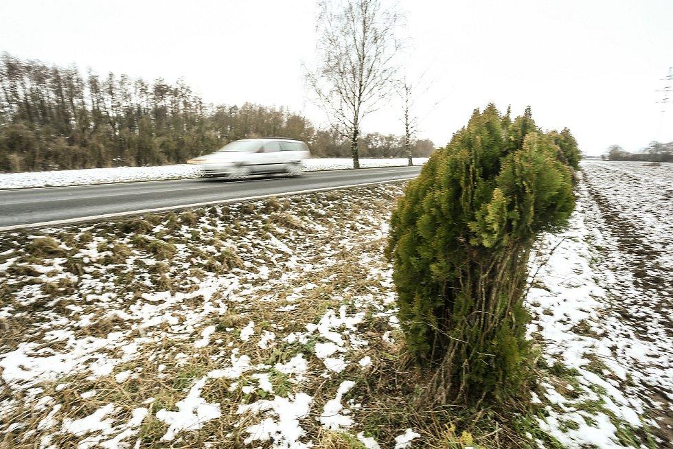 Keř na místě tragické nehody u Lžovic.