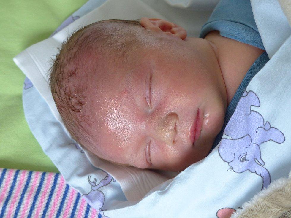 Dominik Hajný se narodil 30. června 2021 v kolínské porodnici, vážil 3390 g a měřil 50 cm. Do Sokolče odjel s maminkou Andreou a tatínkem Petrem.