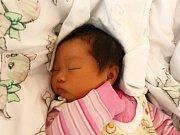 Thu Huyen Nguyen se narodila 26.10.2018 s mírami 3120 g a 47 cm.Ve Svatém Mikuláši ji přivítají sourozenci Tran Son Nguyen (7),Thu Trang (3) a rodiče Thi Hien a Van Son.