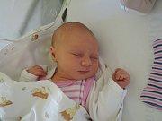 Petře a Jakubovi se narodila dcera. Hana Ženatá je prvním potomkem rodiny žijící v Pňově – Předhradí.Narodila se 26. prosince 2016 s váhou 3310 gramů a mírou 50 centimetrů.