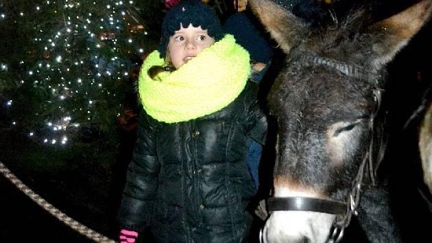 Černokostelečtí rozsvítili vánoční strom, užili si trhy i živý betlém