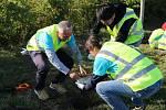 V průmyslové zóně dobrovolníci vysadili desítky borovic.