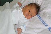 Marie Musilová se poprvé rozplakala 15. srpna 2017. Po narození vážila 3990 gramů a měřila 50 centimetrů. Domů do Vykáně si ji k sestřičkám Kristýnce (14) a Magdalénce (7) odvezli rodiče Barbora a Zdeněk.