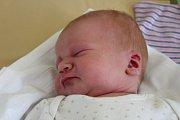 David Pelc se narodil 2. srpna 2017 s mírami 55 centimetrů a 3995 gramů. Coby prvorozeného syna si ho domů do Podmok odvezli rodiče Anastasia a Michal.