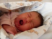 Kateřina Olšaníková se narodila 17. února 2019, vážila 3440 g a měřila 50 cm. V Drahobudicích ji přivítala maminka Kateřina a tatínek Jan.