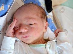 Hugo Zinek poprvé zaplakal 17. dubna 2013. Po porodu měřil 51 centimetr a vážil 3500 gramů. V rodném Kolíně bydlí s maminkou Hanou, tatínkem Karlem a sestrami Klárou (14)  a Gabrielou (10).