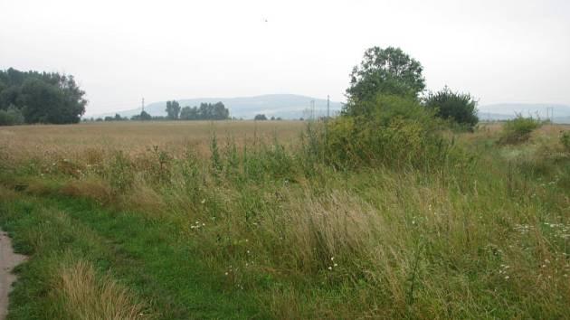 Lokalita Šífovka v blízkosti říčky Klejnarky, kde v budoucnu vyroste čistírna odpadních vod, se nachází mezi Starým Kolínem a Hlízovem.