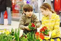 Vítání jara v kolínském nákupním centru